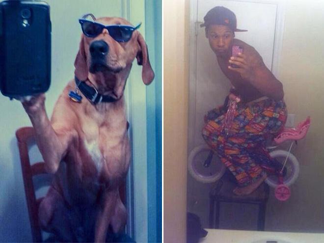 crazy-selfie17