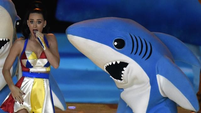 tiburon_perry