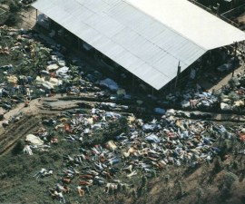 26310d1226505540-jonestown-massacre-photos-18-november-1978-jonestown_1