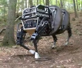 AlphaDog-DARPA