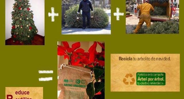 recicla_arbolito_navidad_2013