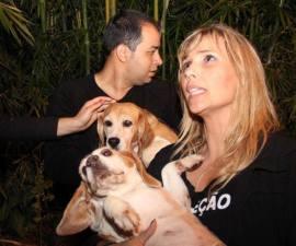 liberacion beagles sp
