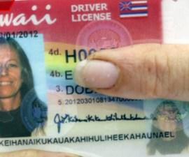 licencia hawaii