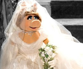 piggy_wed