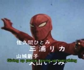 spider japones 2