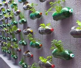 reciclaje botellas de plástico