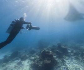 141114183240_great_coral_barrier_624x351_googlemaps