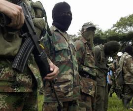 SIETE GUERRILLEROS DE LAS FARC SE DESMOVILIZAN EN CALI