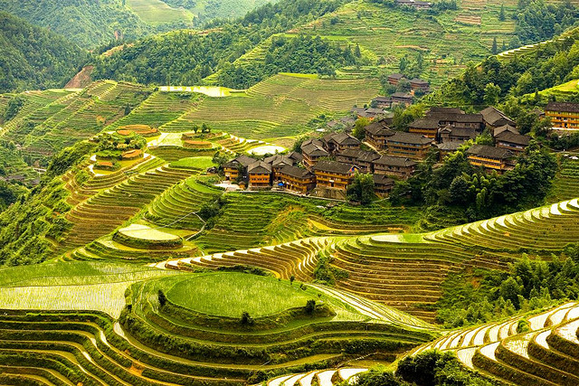 longji-terraces-china