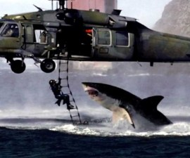 Helicopter Shark