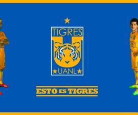info tigres visita