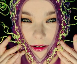 bjork-collaborator-james-merrys-incredible-embroidery-creations-body-image-1435864451
