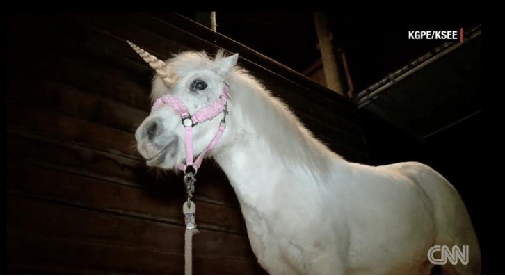 Unicorn escapes in California