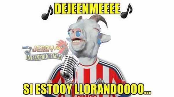 meme-america-chivas3