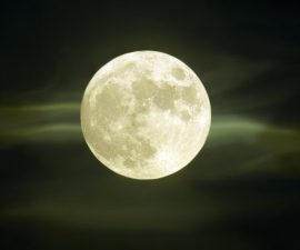 luna fresa