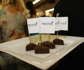 brownies-mota