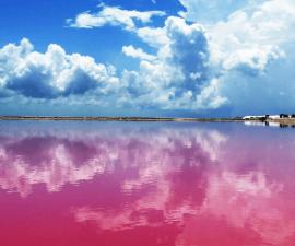 lago-rosa-yucatan
