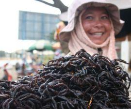 aranas-comida-camboya