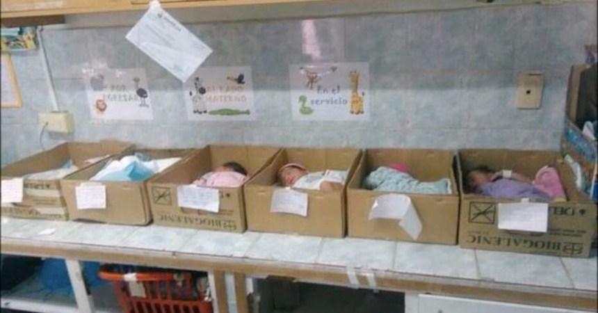 Venezuela Bebes