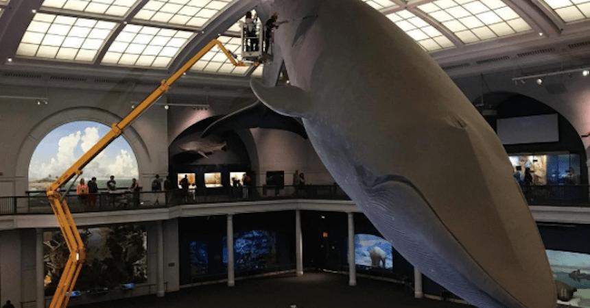 Museos de Ciencias en Norteamérica