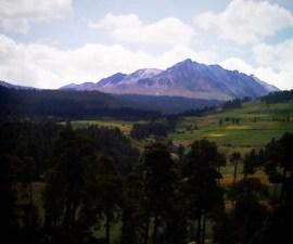 Nevado de Toluca - Imagen del volcán y el bosque.
