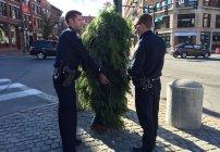 Hombre árbol de Portland, Maine