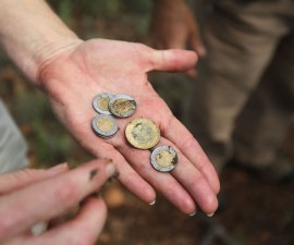 dinero-moneda-pesos-inflacion-banco