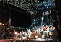 Brian Wilson Trópico