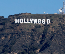 Hollywood, Hollyweed