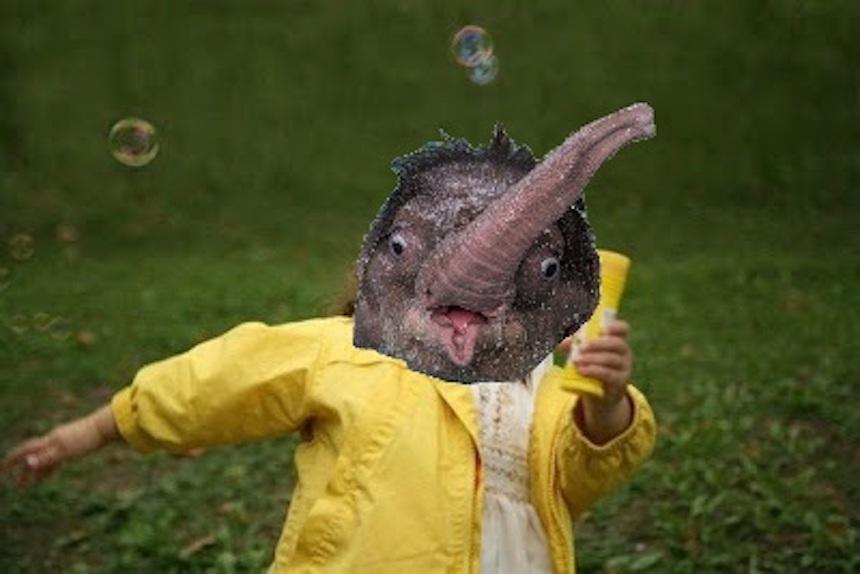 Elefante bebé - Niña corriendo