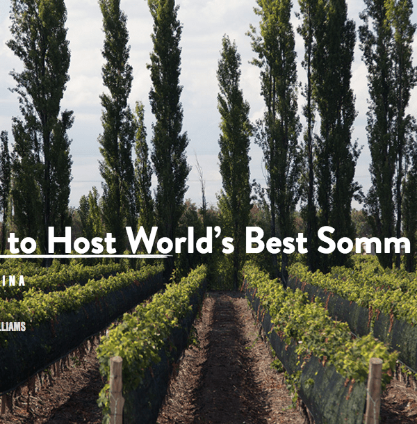 Mendoza will host the fifteenth Contest of the Best Sommelier of the World.