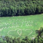 The perfect wedding proposal makes sure NO is not an option.