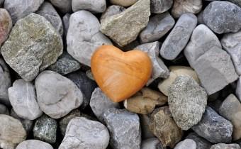 heart-526661_640