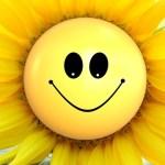 sun-flower-865734_640