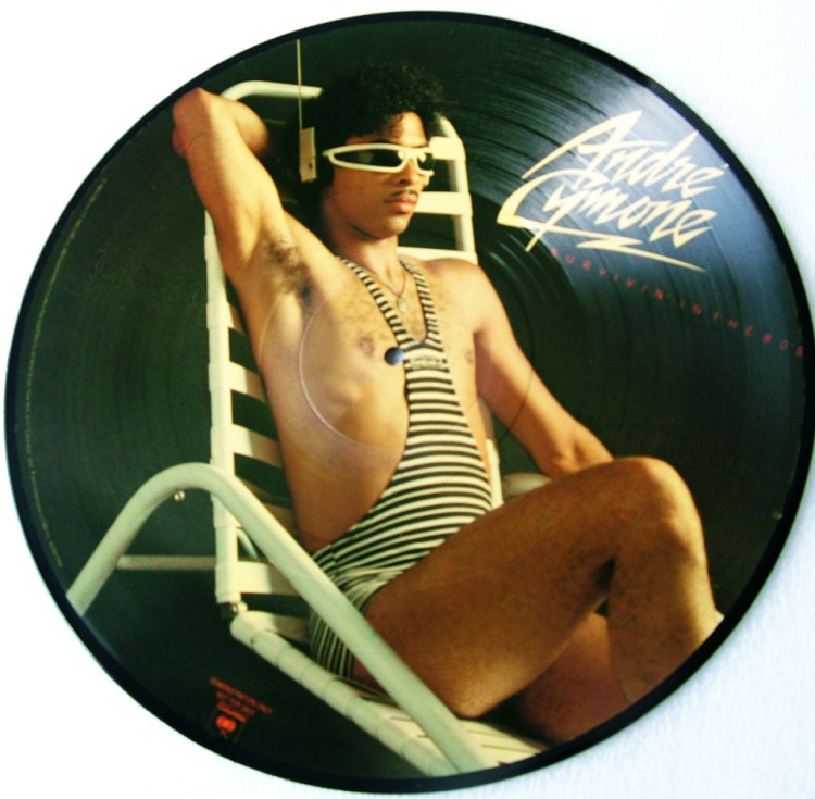 Andre' Cymone - Survivin' in the 80's Picture Disk