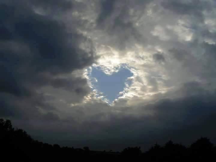 ELEGY OF LOVE