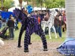 coconutgroveartfestival21410-073