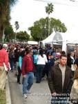 coconutgroveartfestival21410-117