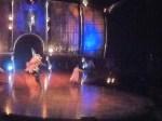 Cirque du Soleil Dralion  2 (640x478)