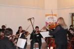 Fundacion orchestral Siman de ninos