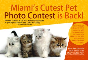 Cutest-Pet-Contest