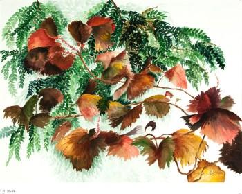 Susan-K-Feldman-leaves