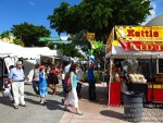 southmiamiartfestival110213-012
