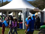 140215 Coconut Grove Art Festival_00009