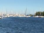 Sprung Beer Fest 2014 Yacht Club (640x480)