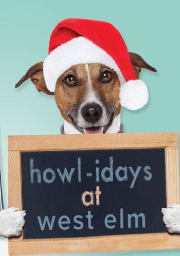 Cropped-Christmas-howliday-event