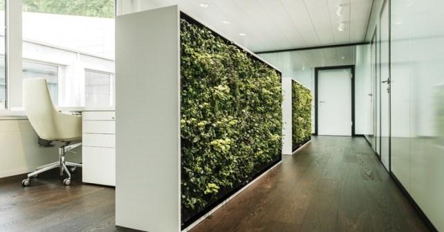 1-Cubical-hallway-secretary-office-HR-DOST_--HIRSLANDEN_170_K1