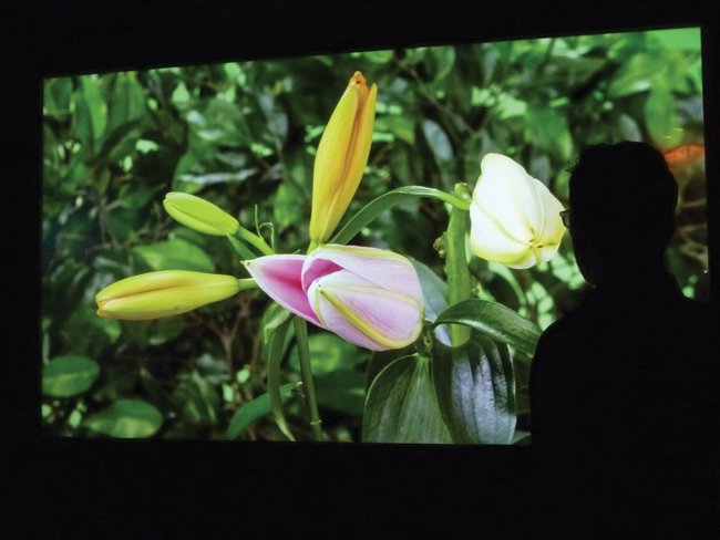 Panasonic unveiled a 98-inch 4K display for applications where detail is critical.