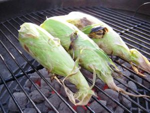 <p>Unhusked Corn On The Grill</p>