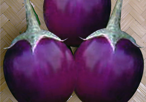 Brinjal Brinjal A Low Calorie Vegetable and Other Health & Nutritional Info